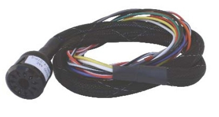 reno 11 pin harness  reno loop detector wiring harnesses Wiring Harness Terminals and Connectors Automotive Wiring Harness